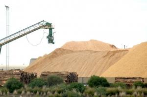 Australian woodchip exports soar