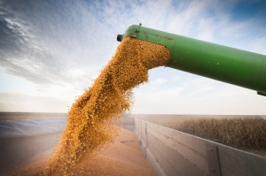 Cargill focuses on support for agriculture