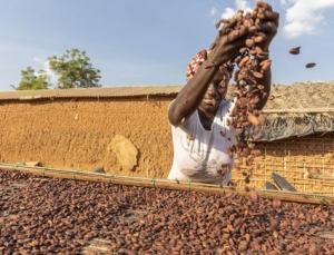 Cargill progress on sustainability goals