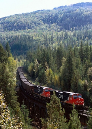 CN sets latest grain movement record