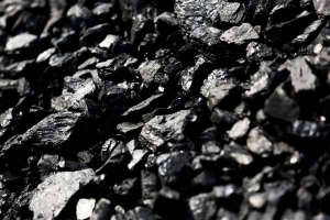Coal significant in energy transition say German importers