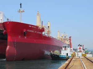 Fednav takes delivery of historic new vessel