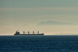 Inmarsat selected after successful Taiwan Navigation bulker trial