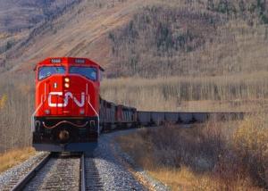 Latest grain movement record for CN