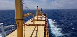 MINSHIP embarks on bulker biofuel trial