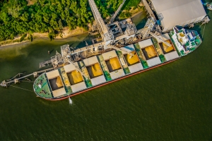 Report outlines U.S. soybean export outlook