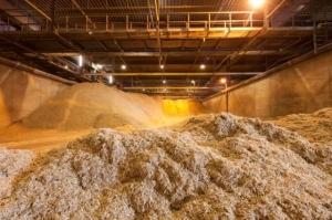 Rotterdam biomass imports grow