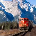 CN and CP report latest grain transport records