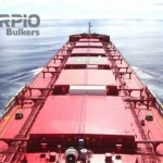 New direction for Scorpio Bulkers
