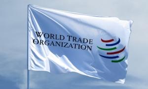 U.S. opposes Okonjo-Iweala as next WTO chief
