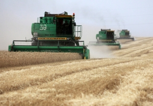 Ukraine's agricultural export record
